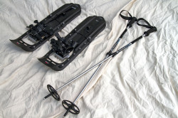 MSR Snowshoes (adjustable) and Trekking Poles